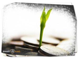 servis-365-profit-com
